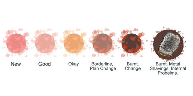 Transmission Fluid Color Comparison