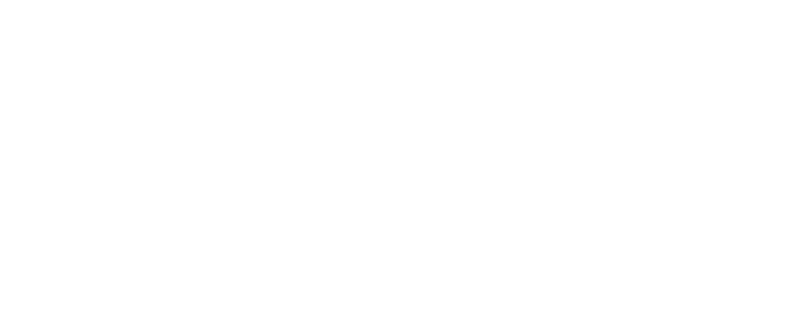 Speed Gems Logo White Final